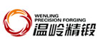 Shandong Wenling Precision Forging Technology Co., Ltd.